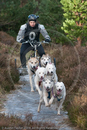 Husky Dog Racing Team