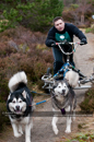 Class E2 dog sled racing team