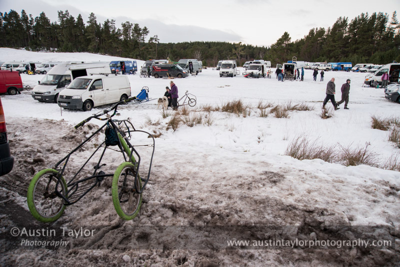 Aviemore Sled Dog Rally 2013