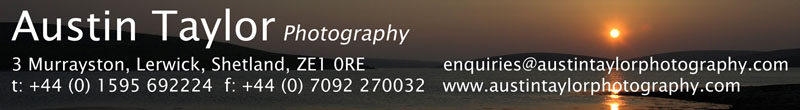 Austin Taylor Photography - Contact Details